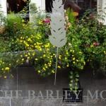 Barley Mow SW1